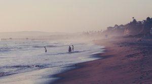 Sterben am Meer